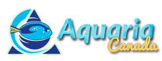 Aquaria Canada - Powered by vBulletin