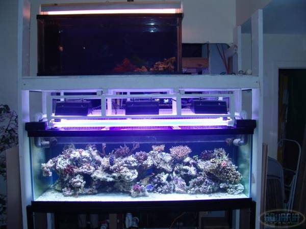 New 180 with 55gal fuge